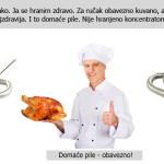 Zdrava hrana – Alternativa amater