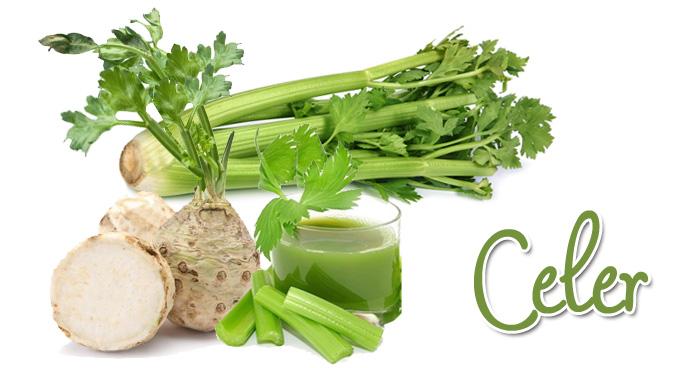 Herbarijum - Sirova biljna hrana leči teške bolesti. Celer. Antioksidans.com