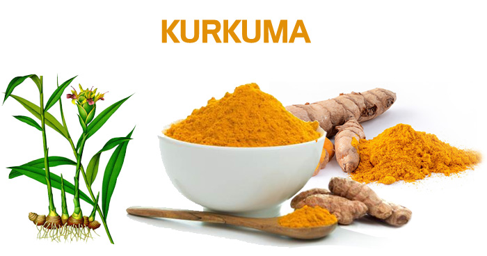 Herbarijum - Kurkuma - Sirova biljna hrana leči teške bolesti. Enzimi.