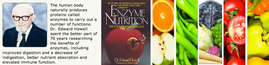 Enzimi su glavni lekari vašeg organizma - Lečenje bolesti sirovom hranom. Alternativa. Veganstvo. Lek za rak - antioksidans.com