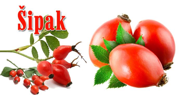 Herbarijum - Sirova biljna hrana leči teške bolesti. Šipak. Antioksidans.com