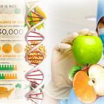 GMO genetski modifikovani organizmi