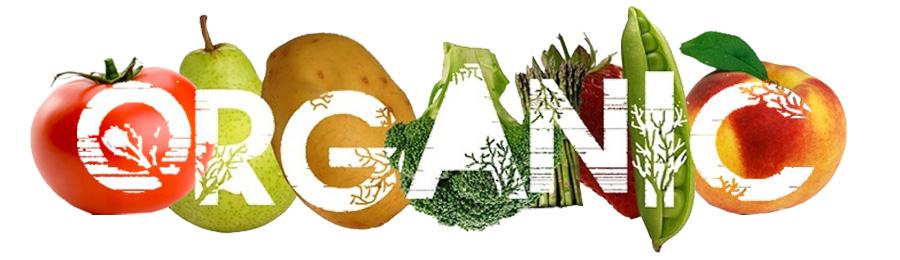 Organska hrana je preduslov zdrave ishrane. Ako se lečite hranom i alternativom, poželjno je da hrana bude organski proizvod bez otrova i pesticida.