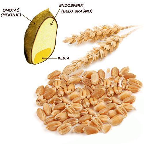 Nisu sve žitarice zdrave jer većina nijh podstiču kardio i autoimune bolesti. Termički obrađene žitarice i skrob opasne su po zdravlje. Antioksidans. Termički obrađene žitarice i skrob opasne su po zdravlje. Antioksidans.