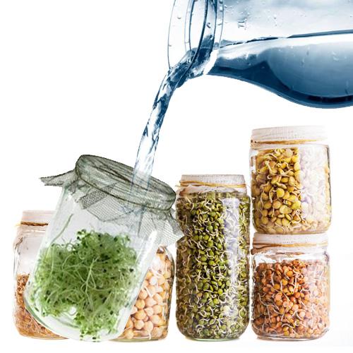Klice kao superhrana pravo su bogatstvo nutrijenata. Klice su prepune živih enzima i vitamina i prestavljaju osnov ishrane tumorskih i malignih pacijenata.