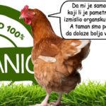 Organska piletina - organsko meso