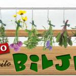 Lekovito zdravo bilje