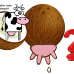 Biljno mleko pomaže i jača imuni sistem